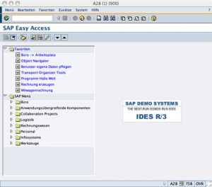 SAP-Java-GUI-Umgebung